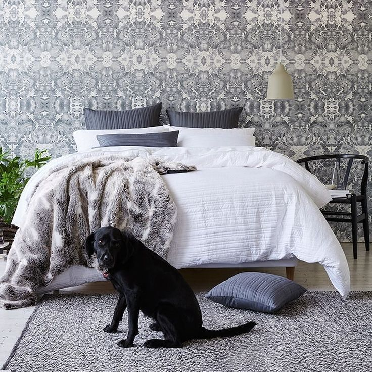 The perfect winter's day in one photo. #liein #bright #puppyfriend #dogsofinstagram #bedroominspo #homestyle #styling #interiorstyle