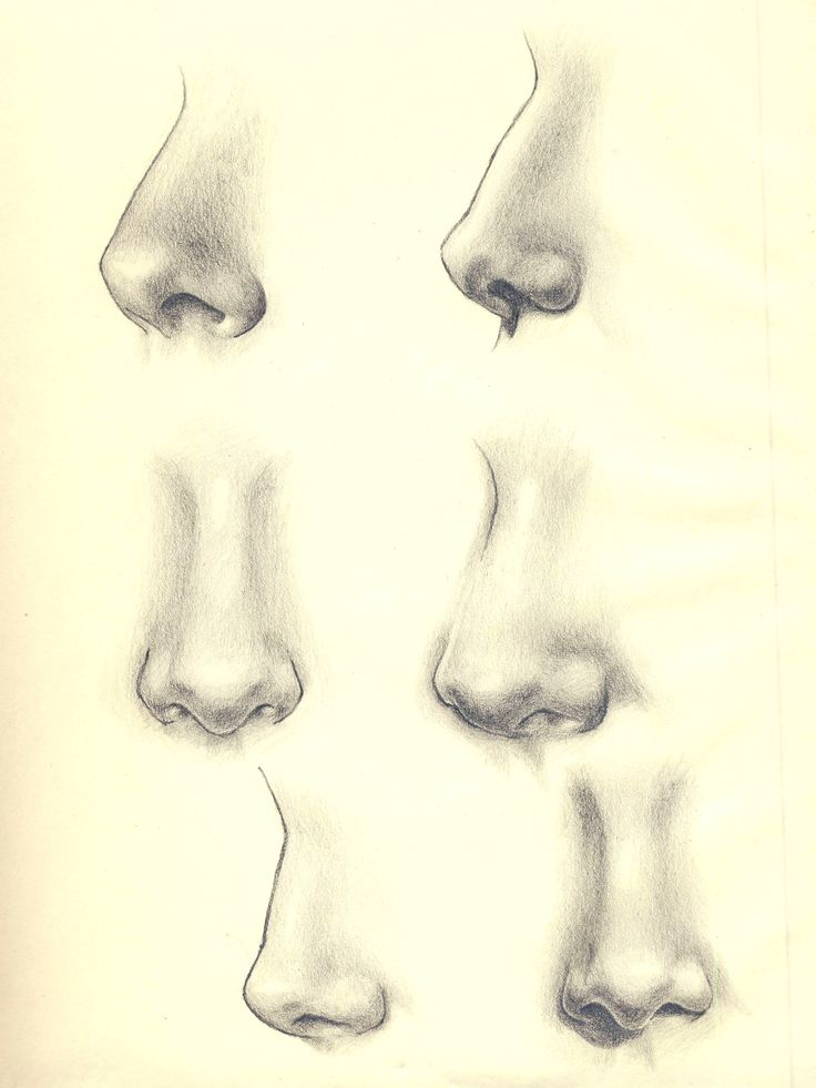 my sketches of noses. Pencil on paper
