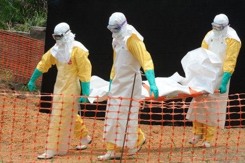 Ebola, une épidémie sans précédent et hors de contrôle (vidéo) - International - Actualité - LeVif.be