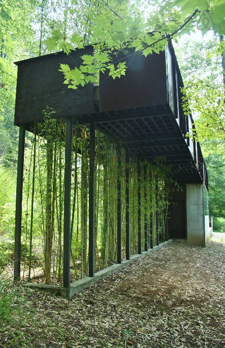 Modern tree house holiday rental - Bamboo shoots upward through steel grates to your private slate and steel catwalk and terrace - Scogin & Elam design