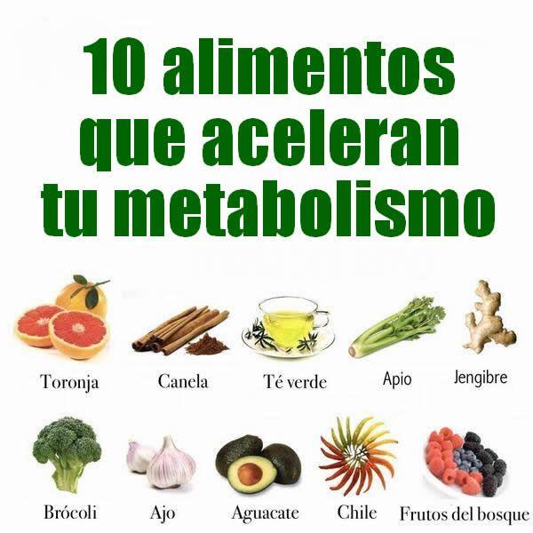 Tipos de metabolismo conferencias