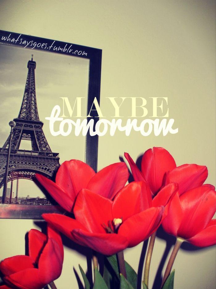 maybe tomorrow / paris & tulips