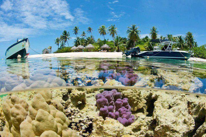 Tikehau, Tuamotu Islands, French Polynesia