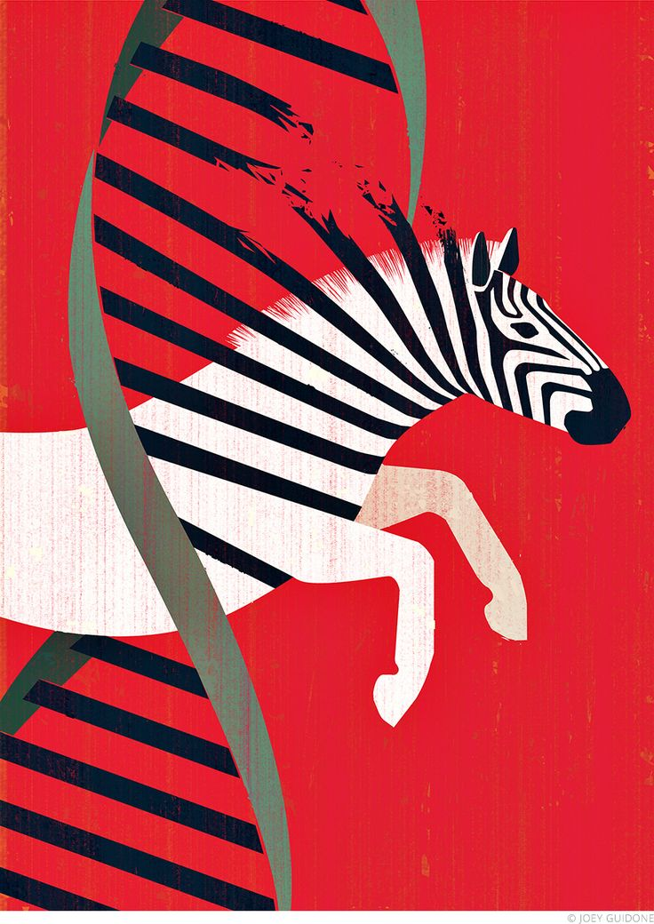Joey Guidone - Zebra Diagnosis. Cover for the Johns Hopkins Health Review. DNA, Gene, Jump, Conceptual, Poster, Magazine, Surrealistic