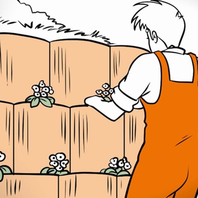 Hang Befestigen Schritt Fur Schritt Anleitung Obi In 2020 Pflanzstein Garten Planen Obi