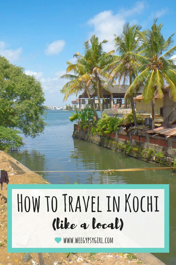 How to Travel in Kochi Like a Local