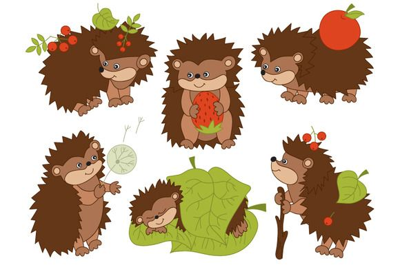 Awesome digital illustrations for digital scrapbooking kit designers and graphic designers. Perfect for scrapbooking elements and papers, card making and invitations. Forest Hedgehogs by Tanita_B on @creativemarket