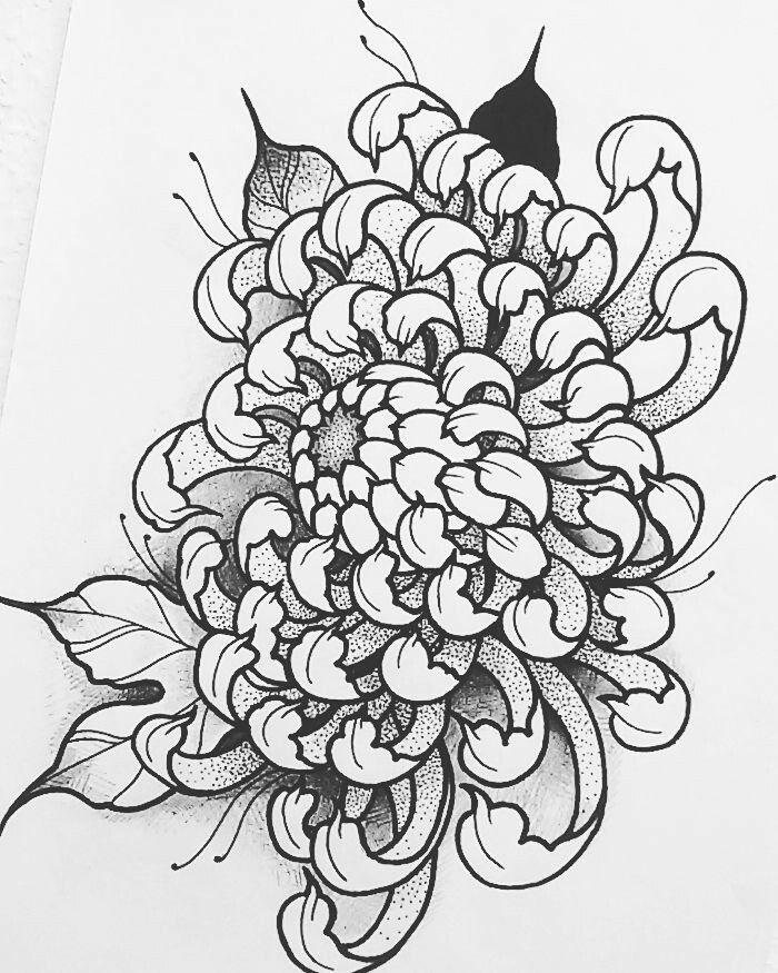 Japanese Flower Line Drawing : Best ideas about chrysanthemum tattoo on pinterest