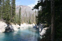 Кутеней рек Британская Колумбия Канада...