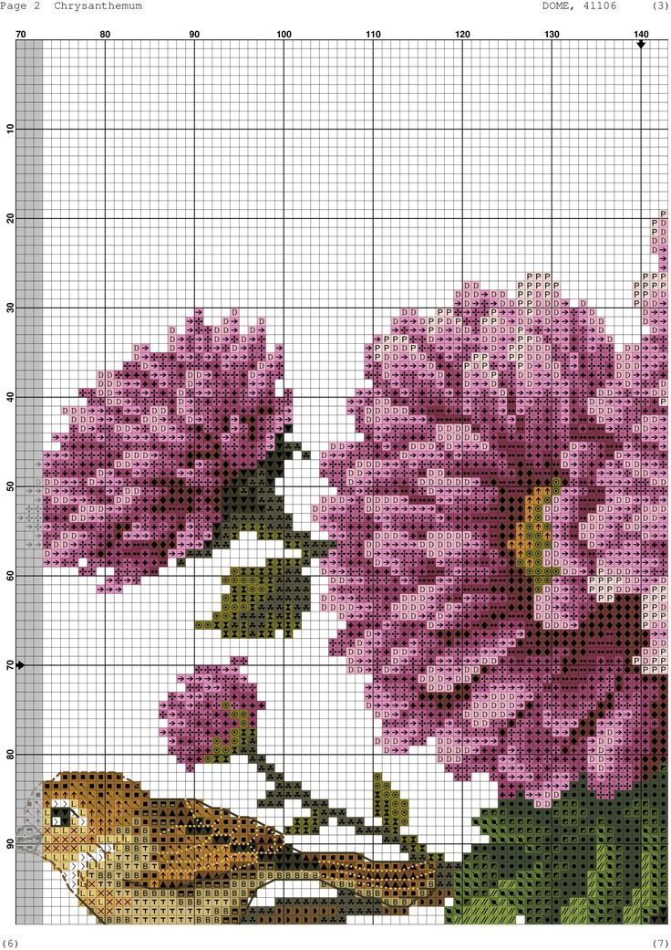 Chrysanthemums 4/10