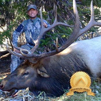 Guided elk hunts in Idaho