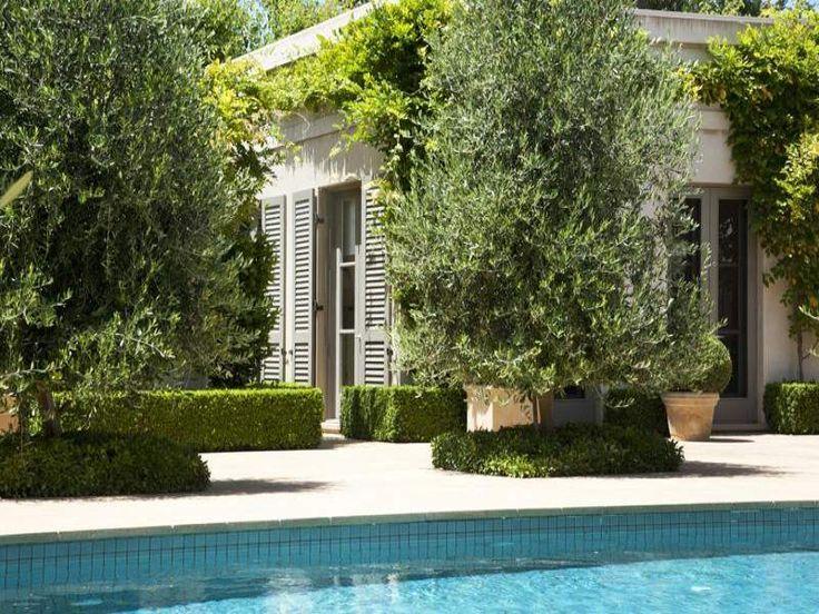 Puertas que dan a la piscina, así será la fachada al jardin