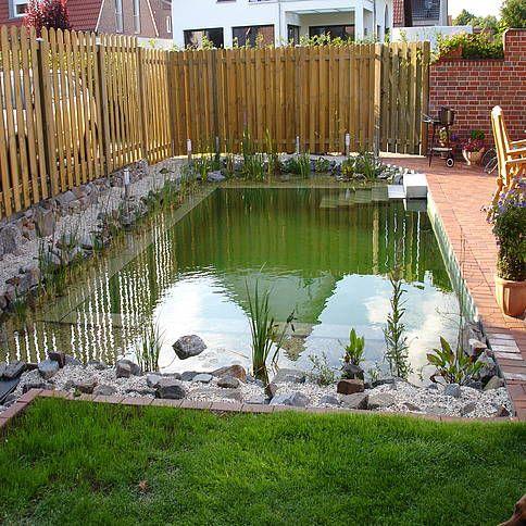Schwimmteich mit Pflanzen- und Badezone