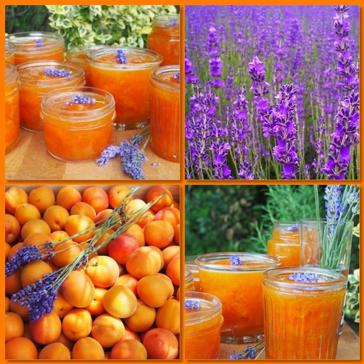 Apricot and Lavender Jam for #SundaySupper and Toast!