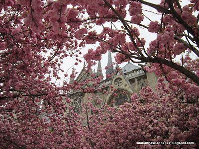 Paris in the springtime...