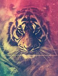 tigre con humoo rosado