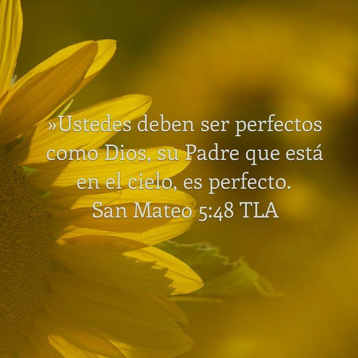 Mateo 5:48