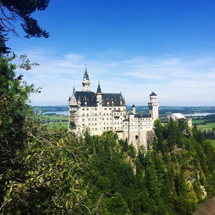 Just like a fairytale  regram from our exchanger @laura_bills who managed to check out Neuschwanstein Castle before starting Semester 2 at the University of Mannheim.  #student #exchange #germany #neuschwanstein #castle #mannheim #studyabroad #uaglobal