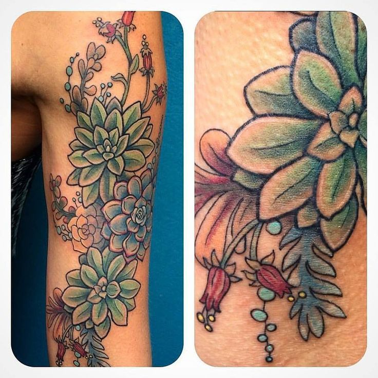 Image result for traditional style succulent flower tattoo