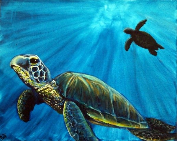 91 best images about sea turtles on pinterest sea for Turtle fish paint