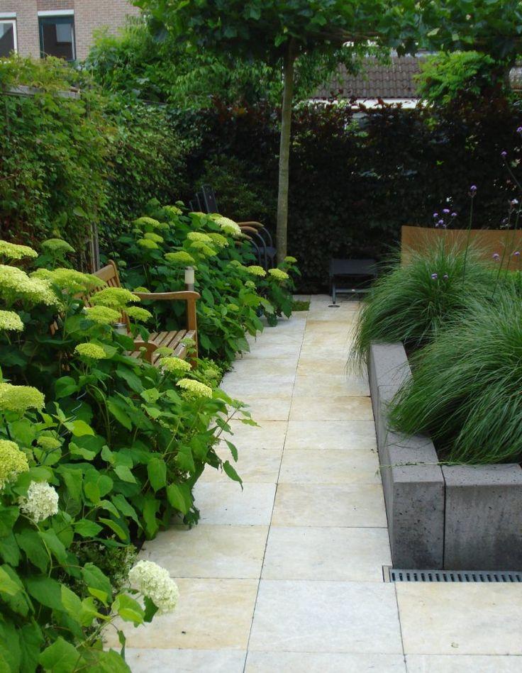 Leuke achtertuin met verhoogde plantenbak en dakplatanen