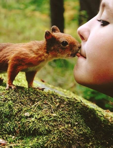 omg- i want to feed a baby squirrel with my mouth now!  lmbo!
