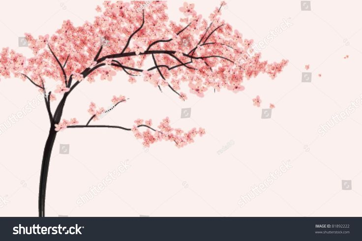 Image result for cherry blossom illustration LM Branding - fototapeten f r k che