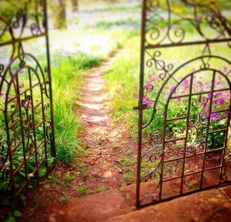 Through the gate, and down the garden path ...