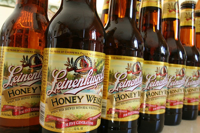 Leinenkugel's Honey Weiss. Great summer 'Hang out by the pool' beer. If you like light crisp beers, you'll like this.