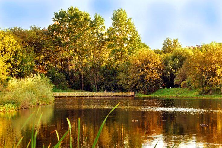 Жанры фотографии - http://berova.ru/poleznye-sovety/zhanry-fotografii/