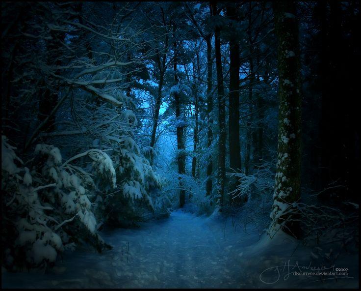 dark forest art 14 best dark forests images on pinterest dark forest misty