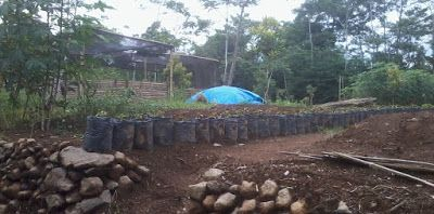 SECELENG: Starting a Farm Life With Nothing