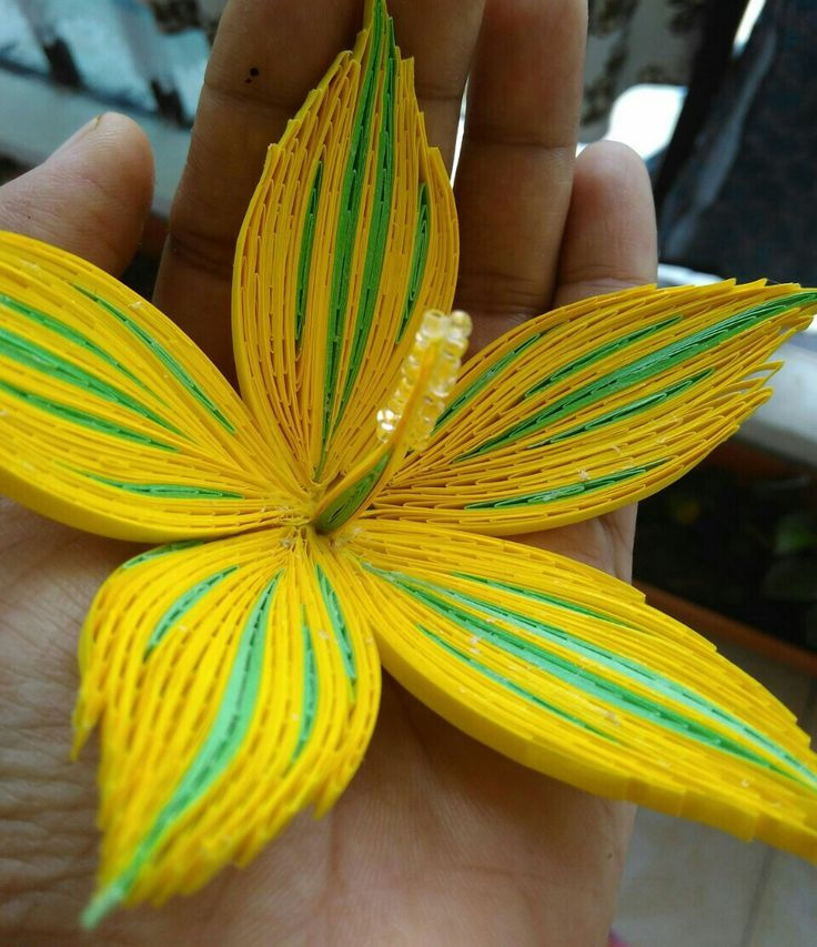 Květ - žlutý Ibišek * quilling