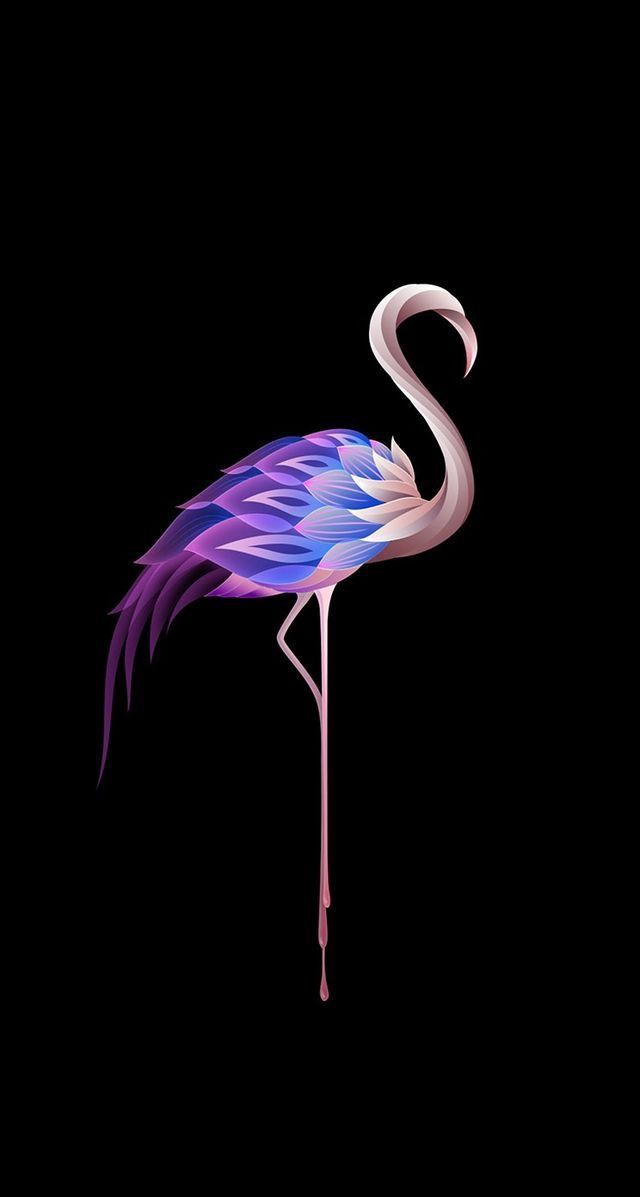 A strangely colourful flamingo on a black background. The colours include blues