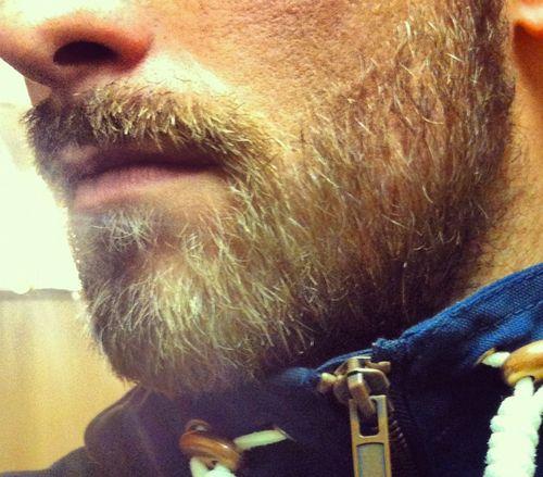 17 best images about 28 beards on pinterest man beard. Black Bedroom Furniture Sets. Home Design Ideas