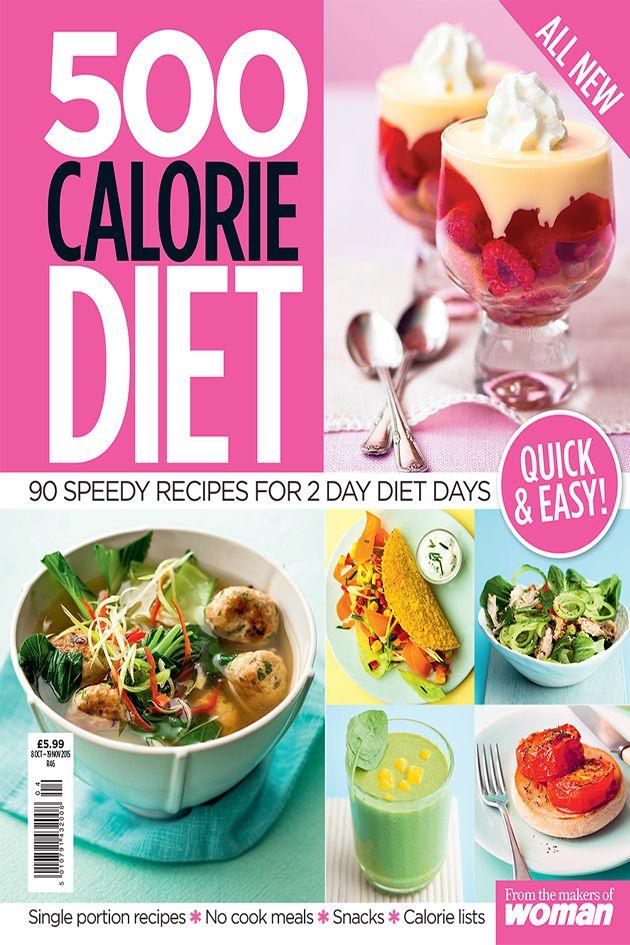 500 Calorie Planner