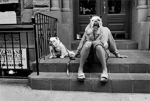 "So many of Elloit Erwitt's photos look like ""a luck shot,"" but when you see the body of his work, you realize that luck had little to do with it."