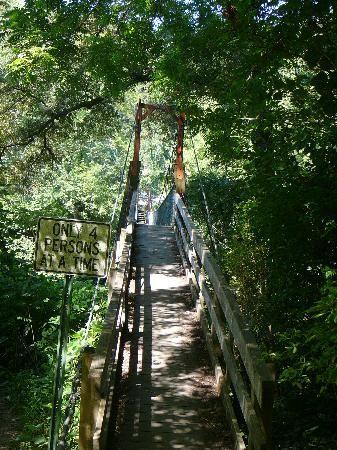 Kinzel Springs Swinging Bridge, Townsend, TN, Smoky Mountains