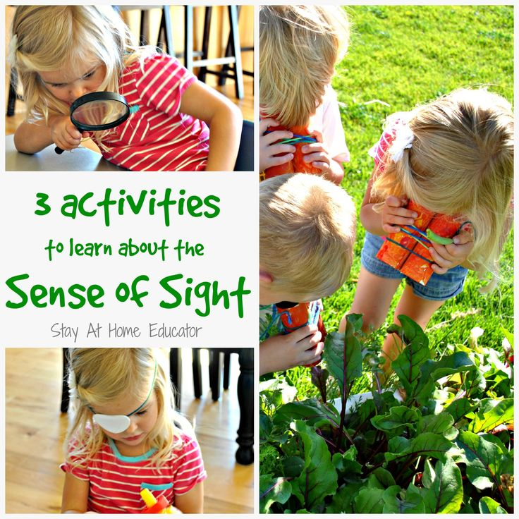 Three activities to explore the sens of sight - preschoolers love to learn about the five senses.  This theme is hugely appropriate as it can be very play based - Stay At Home Educator