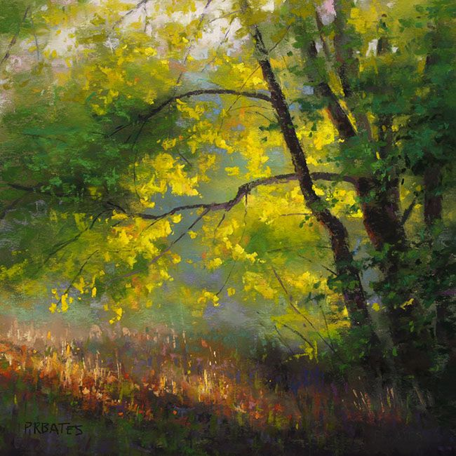 Tree On The Bank - WetCanvas