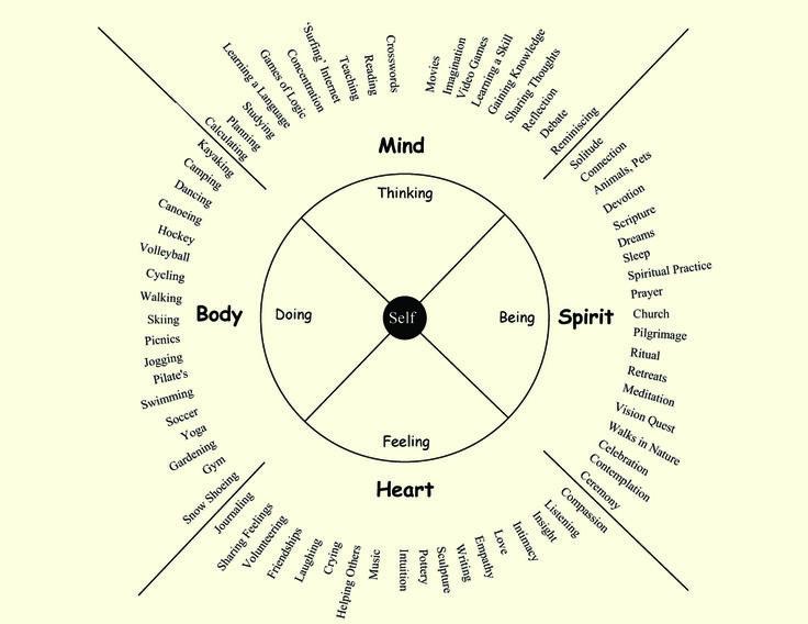 The 25 Best Wellness Wheel Ideas On Pinterest Life
