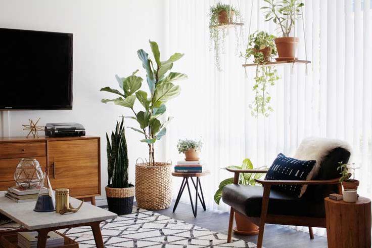 Cosy plant-filled living room via New Darlings Follow Gravity Home: Blog - Instagram - Pinterest - Facebook