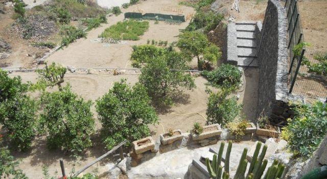 Casa Rural Anton Piche - #CountryHouses - $57 - #Hotels #Spain #GranadilladeAbona http://www.justigo.biz/hotels/spain/granadilla-de-abona/casa-rural-anton-piche_15019.html