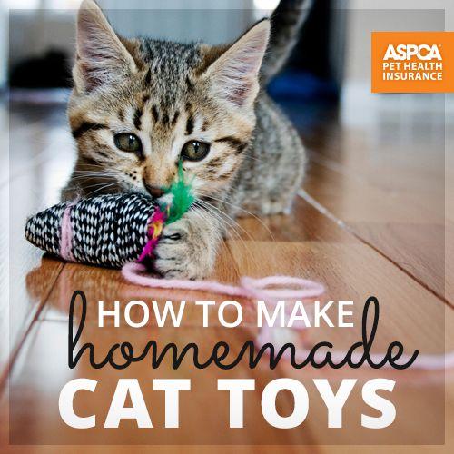 Super easy & fun! #Cats #Toys #CatToys