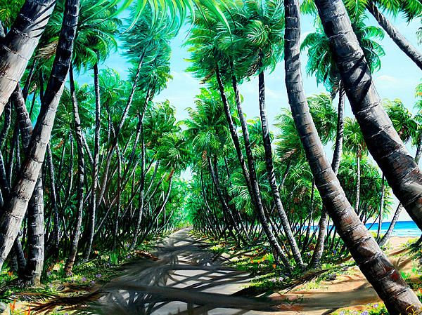 Manzanilla Coconut Estate By Karin Dawn Kelshall Best