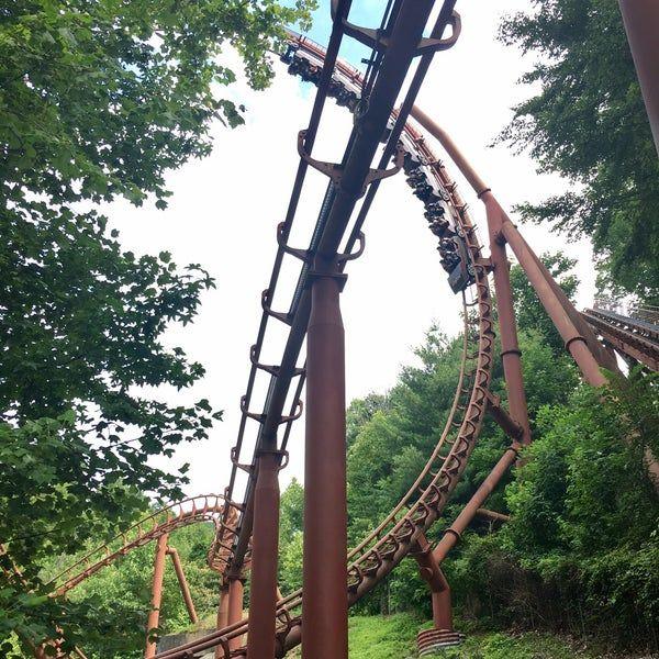 a2d6052bb5017029ddc2e5a1ed59a358 - Cheetah Hunt Busch Gardens Height Requirement