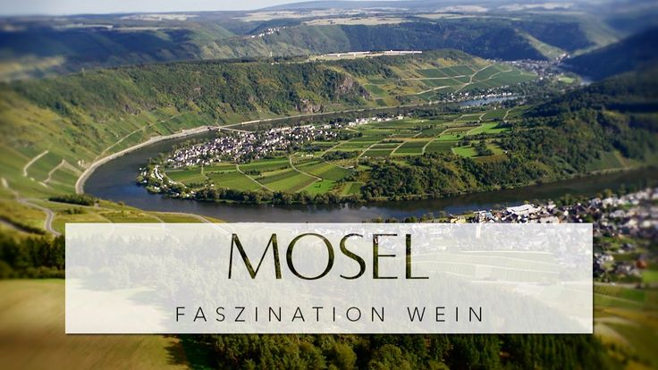 MOSEL - Faszination Wein