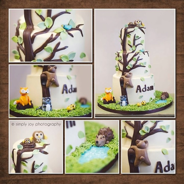 forest friends baby shower cake photo by simply joy photography by