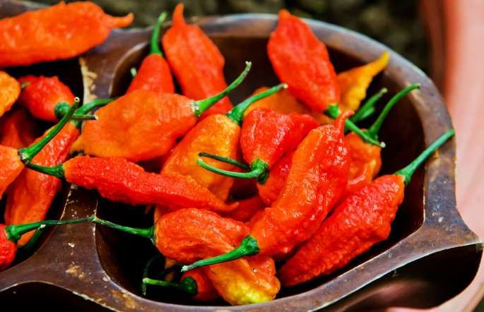 #10 Bhut Jolokia (Ghost Pepper) -  1,000,000 Scoville units.