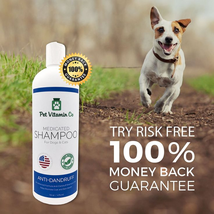 Dog Shampoos For Dandruff